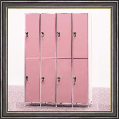 广州厂家打造健身房储物柜