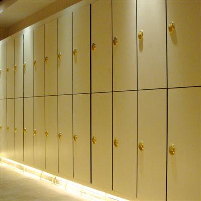 工厂生产最有品味健身房储物柜