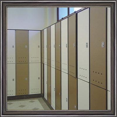 广东学校储物柜