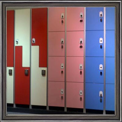 耐火公共储物柜